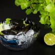 Mussels — Stock Photo #6907912