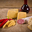 Hard cheese to me salami Purely Porc — Stock Photo #7583564