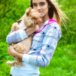 Young girl holds in his hands a little dog — Stock Photo #7540153