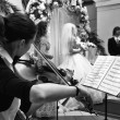 Black and white shot of girl playing the violin at the wedding ceremony — Stock Photo #7540246