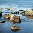 Stone beach — Stock Photo #7644799