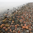 Stock Photo: Stone beach