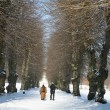 Winter in denmark — Stock Photo