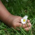 Flower child — Stock Photo