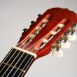 Guitar — Stock Photo #7647097