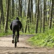 Green forest biker — Stock Photo