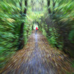 Green path — Stock Photo