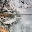 Foto Stock: Trees & lake