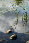 Озеро камни — Стоковое фото