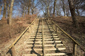 Merdiven — Stok fotoğraf