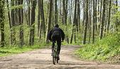 Groen bos biker — Stockfoto