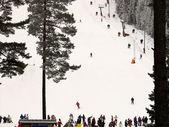 Ski in sweden — Stock Photo