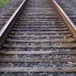 Railroad Tracks Running to the Horizon — Stock Photo