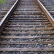 Railroad Tracks Running to the Horizon — Stock Photo #6901703