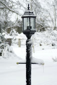 Lamp Post Covered in Snow — Stock Photo