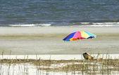 Sozinha na praia — Foto Stock