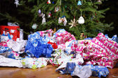 After Christmas Mess Landscape — Stock Photo