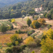 Stock Photo: French landscape of the Cevennes in autumn