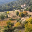 French landscape of the Cevennes in autumn — Stock Photo #7287898