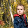 Cute boy and falling leaves — Stock Photo