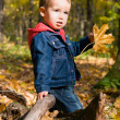 Stock Photo: Cute boy and falling leaves