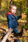 Garçon mignon et chute des feuilles — Photo