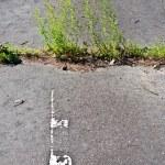 Old asphalt road texture — Stock Photo