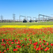 Power plant in beautiful flower meadow — Stock Photo #6824742