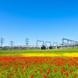 Electrical power plant in beautiful colorful meadow — Stock Photo