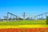 Centrale électrique dans la belle prairie coloré — Photo