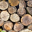 Stock Photo: Woodpile (round)