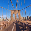 brooklyn bridge in new york — Stock Photo #6919540
