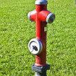 Stock Photo: Hydrant at the meadow