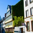 The Goethe Haus with museum in Frankfurt — Stock Photo #7025014