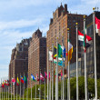 Stock Photo: United Nations Headquarters with flags of members of U