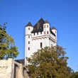 Famous tower of Eltville castle - ストック写真