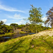 Untouched nature on the island of Fanoe in Denmark — Stock Photo