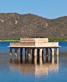 Cormorans at Water Palace (Jal Mahal) in Man Sagar Lake. Jaipur, — Stock Photo