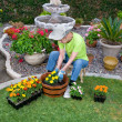 Adult Senior planting flowers — Stock Photo