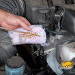 Checking car engine oil level - Foto Stock