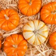 Pumpkins on hay — Stock Photo