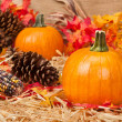 Autumn theme — Stock Photo #7453065