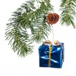 Christmas ornament hanging from branch — Stock Photo #7453108