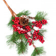 Decorated Christmas tree branch - 图库照片