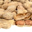 Shelled peanuts - Stock Photo