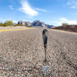 Fork in the road - Stock Photo
