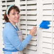 Maid cleaning shutters - Stock Photo