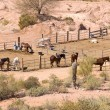 Horse corral — Stock Photo #7453975