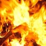 Burning wood — Stock Photo #7454172