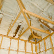 Stock Photo: Newly sprayed insulation